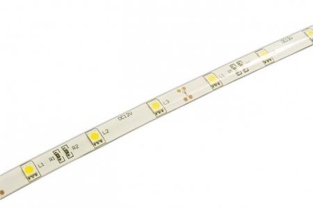 Лента SMD 5050/ 30  Blue  IP65  (5м) ZC-F5050DFL30B-B
