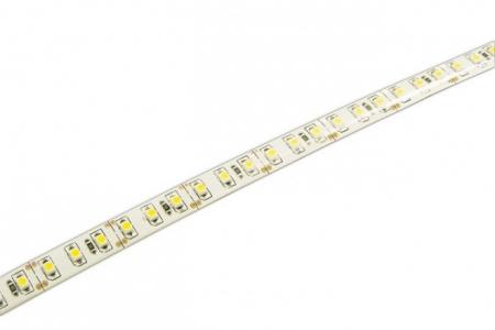 Лента STN 3528/ 120  Warmwhite  IP65  (5м)