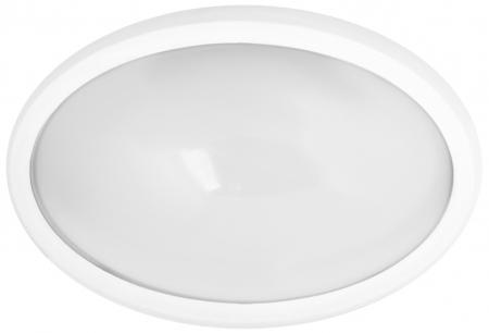 Camelion LBL-0224-NW C01 (Светильник LED влагозащ.24LED,12Вт, IP65, 220B овал)
