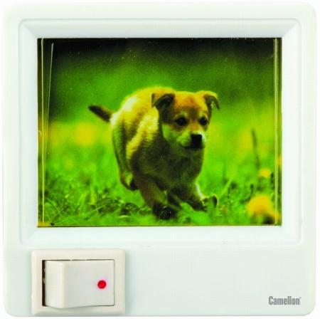 Ночник Camelion XYD-403 - р007 (с картинкой, с выключателем, 220V, 1W)