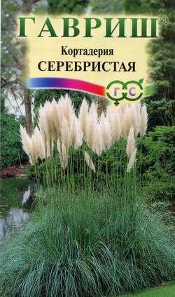 Кортадерия Серебристая (Пампасная трава), 0,01 г