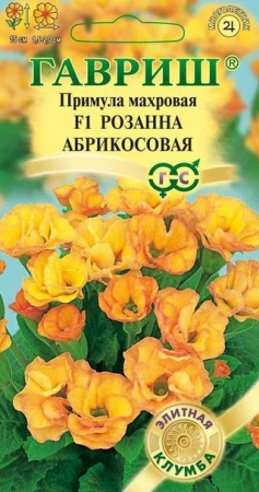 Примула махровая  Розанна абрикосовая, 5 шт.